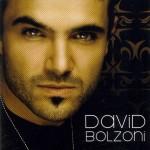 david_bolzoni