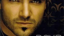 DAVID BOLZONI